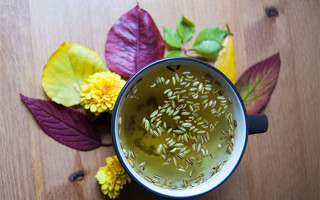 Полезные свойства и рецепты приготовления фенхеля для безопасного похудения
