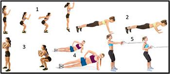 упражнения для похудения в тренажерном зале
