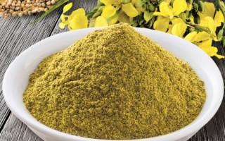 Горчица6 полезные свойства порошка для борьбы с целлюлитом