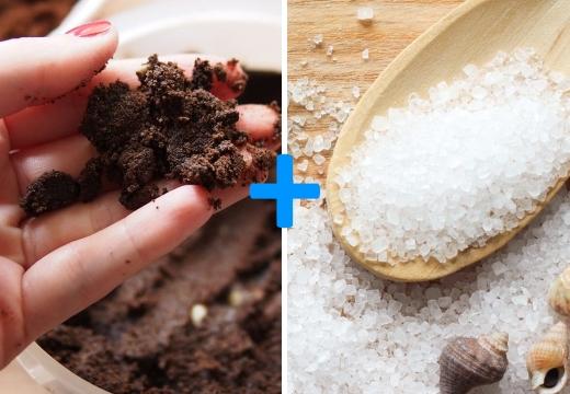 кофейная гуща морская соль