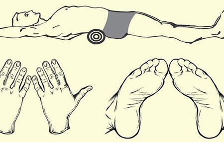 положение конечностей при упражнении
